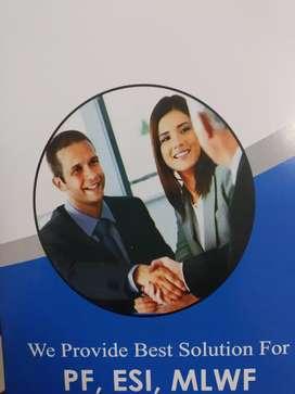 Marketing executive(intern)