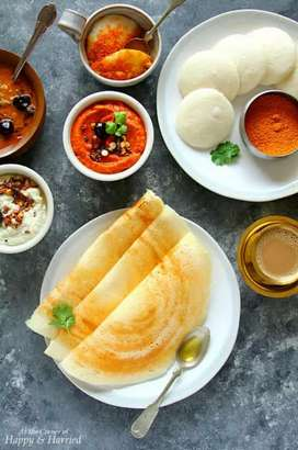 Need South Indian cook