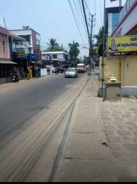 12 cents of land at palachuvd kakanad near cepz and infopark seaport
