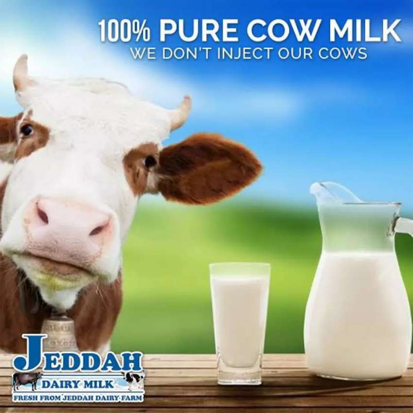 Pure cow milk 100% 0