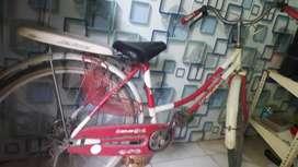 Sepeda Kumbang Murah