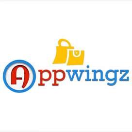 Appwinz software company