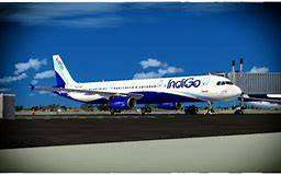 new airlines job apply fast!!