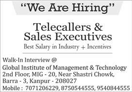 Tele-caller cum Sales executive