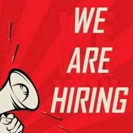 Urgent hiring for HR executive and Receptionist