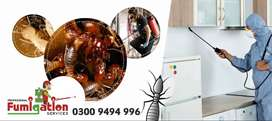 Deemak ( termite) insects, and pests, control services.