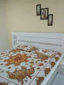 Room Available in Urban Estate PHASE 1, PATIALA