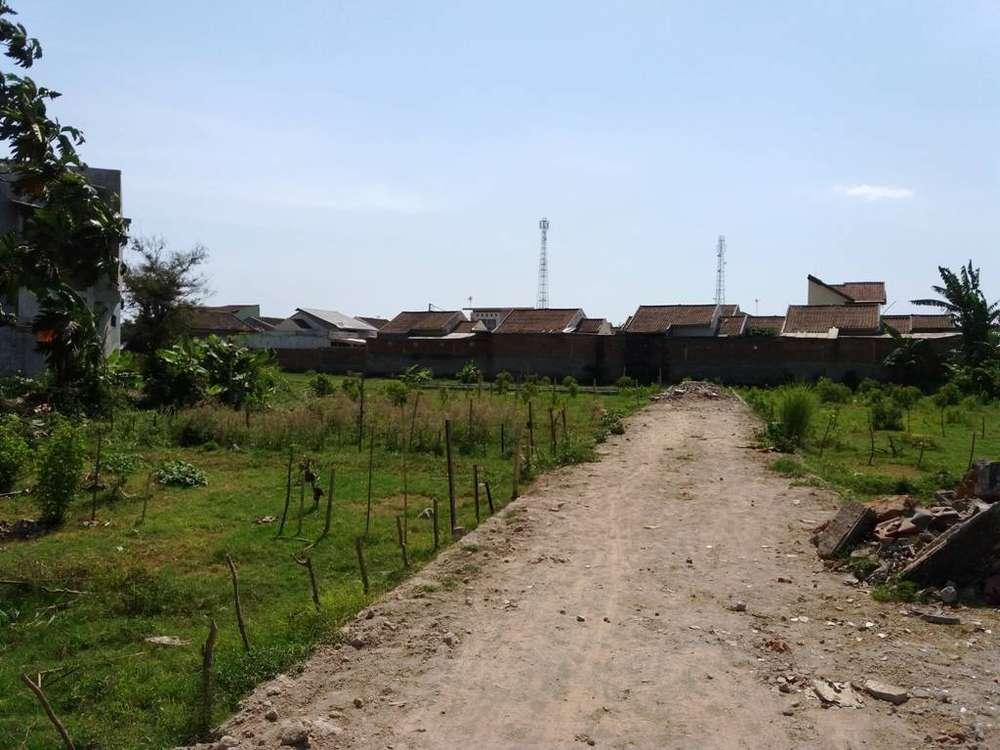 tanah kavling panjitilar mataram wilayah perumahan dan universitas