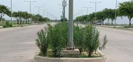 194sq.yd floor for sale in Sec 2,Wave City Nh 24 Ghaziabad