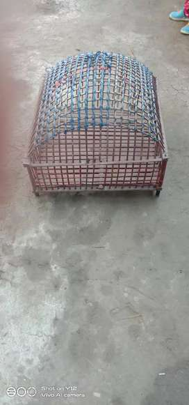 Bird cage bumbo cage