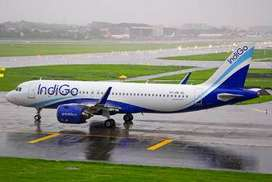 Jobs in Bhopal Airport for Ticketing Executive.
