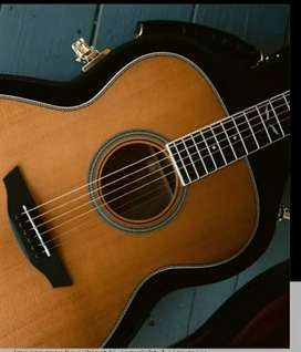 Beginner and intermediate Guitar classes and lessons
