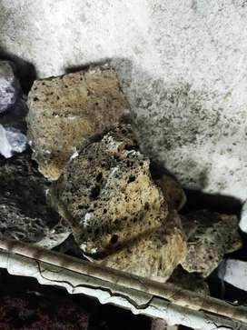 Batu garang grade B  aquarium /aquascape
