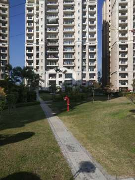 3 BHK Semi furnished flat for rent in ATS lifestyle derabassi