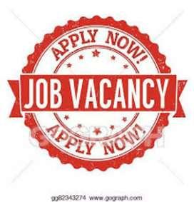 Urgent hiring female and male job vacancy
