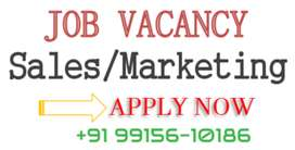Required Sales Manager and executive in Panchkula