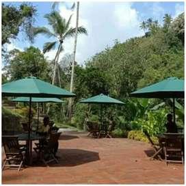 Meja payung taman, pantai, kolam,tempat wisata, halaman, vila, resto