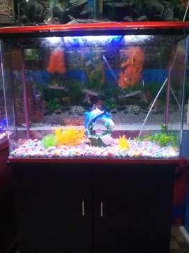 Fish aquarium cum allmirah
