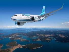 Airline urgent hiring