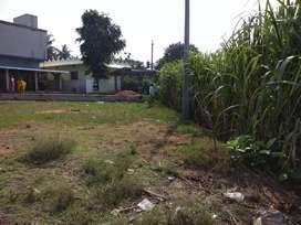 Plot sale near sai sadhanam kalyanamadapam garikaparru 276 gajalu