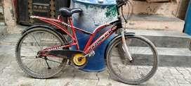 Razorback bicycle