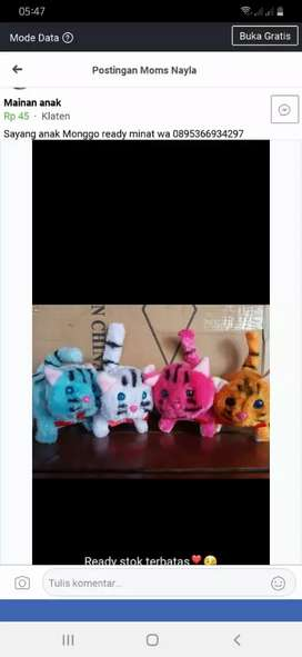 Mainan anak kucing kucingan