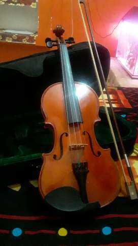 New violin in good condition with hand carriier