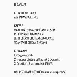 DICARI ART NON MUSLIM