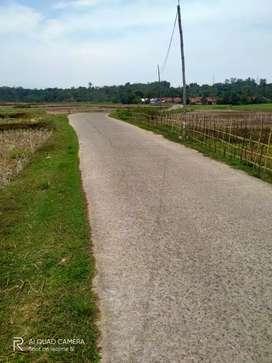 Tanah Murah 5249 meter Girik. Kuta Mekar Cariu Kab. Bogor