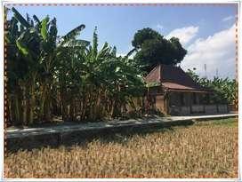 Tanah Sriharjo Kawasan Berkembang Imogiri Bantul