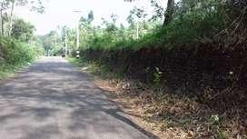 5 Acre Land Anchalpetty