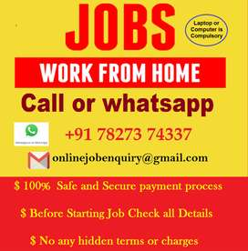 Start this job offer from home. No need to visit anywhere for work.