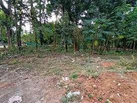 8 cent plot Parali - Kottayi, Pudur road side