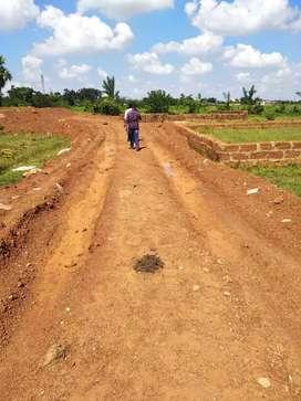Yellow zone gharabari plot sale