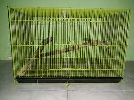 kandang kotak bekas iguana