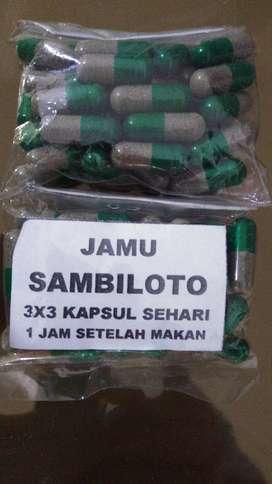 KAPSUL SAMBILOTO ASLI MURAH