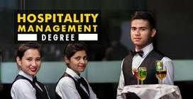 Waiter/Steward