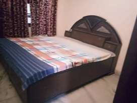 Fully Furnished 1Rk, near main road