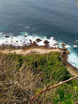 Tanah Los Tebing Pasir Putih di Sekartaji Nusa Penida Klungkung Bali