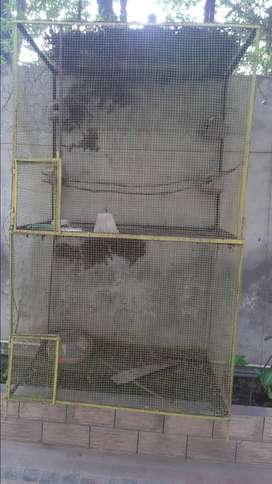 Birds and animals Cage