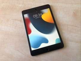 iPad Mini 5th 256GB Wi-Fi