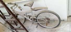 sports bicycle with dual disk brake