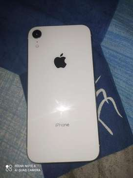 Iphone xr 64 gb ( white )