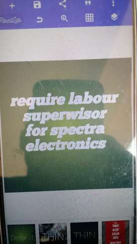 Labour supervisor for electronic spectra