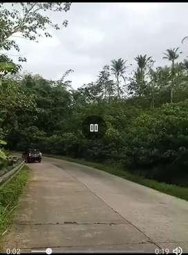Tanah pinggir jalan raya utama