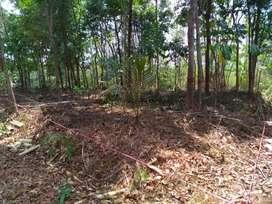 Tanah termurah majalengka