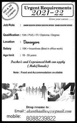 Junior executive officer executive officer senior executive officer