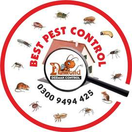 Deemak control دیمک کنٹرول | Fumigation Spray | All Other Insect Spray