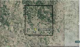 55 murabba ( 1375 Acres ) Government Army allotted agriculture lands