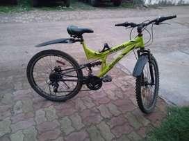 Hybrid cycle
